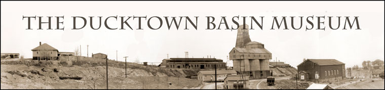 The Ducktown Basin Museym
